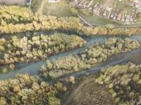 https://broz.sk/obnova-luznych-lesov-pomaha-biodiverzite-aj-klime/