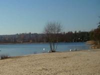 Velký bolevecký rybník; http://www.bolevak.cz/fotogalerie/soucasnost/