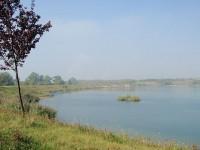 Bílá voda u Chodova; Autor: Cool3d – Vlastní dílo, CC BY-SA 3.0, https://commons.wikimedia.org/w/index.php?curid=10815448